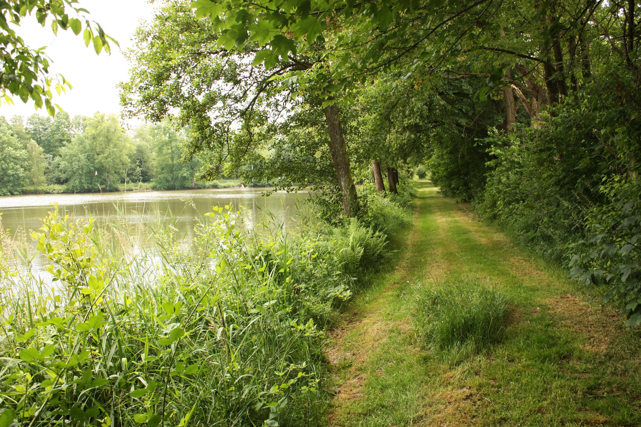 La Cabane Sur L Eau Maison Et Cabane D H Tes Sur Un Lac En Ardennes # Maison Bois Bord De L Eau